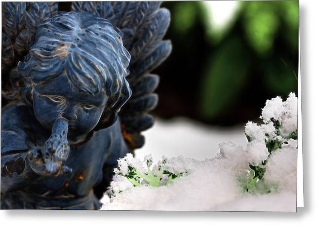 Greeting Card featuring the photograph Snow Angel Whisperer by Shelley Neff