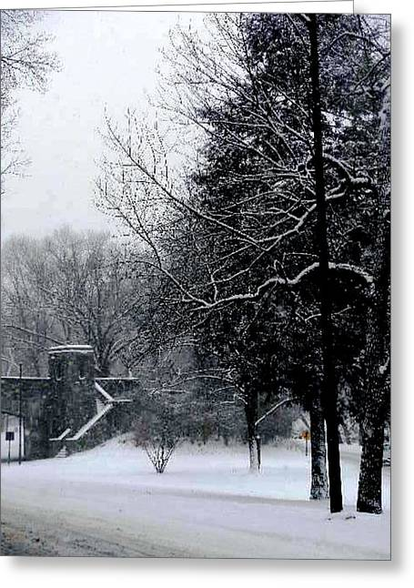 Virginia Pyrography Greeting Cards - Snow Blizzard  Greeting Card by Fareeha Khawaja