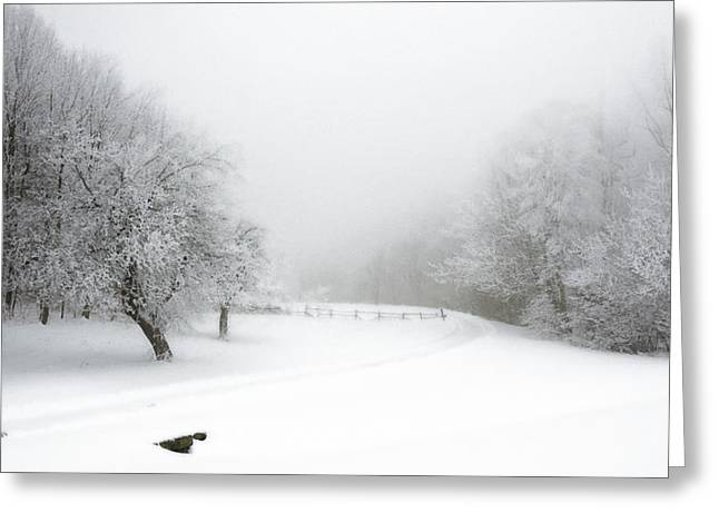 Snow Bound 2014 Greeting Card