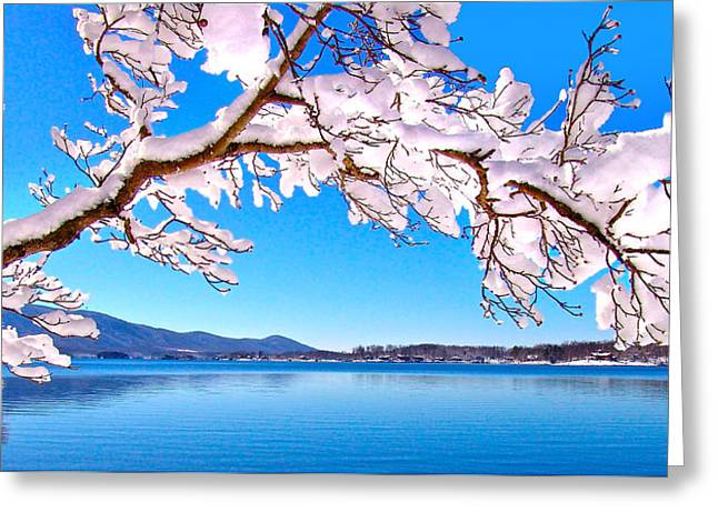 Snow Branch Smith Mountain Lake Greeting Card