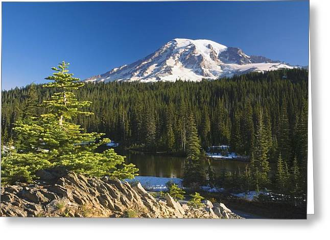 Tuttle Greeting Cards - Snow-capped Mountain Washington,usa Greeting Card by Craig Tuttle