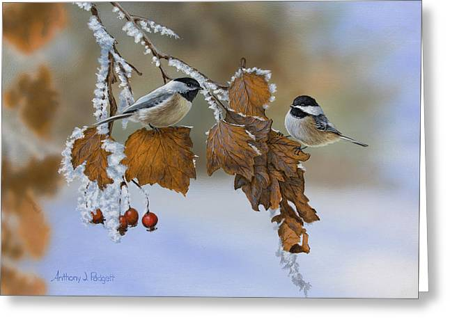 Snow Chickadees Greeting Card