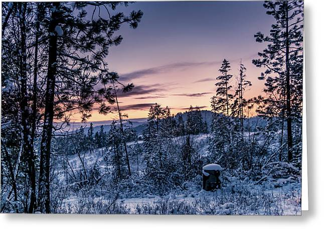 Snow Coved Trees And Sunset Greeting Card
