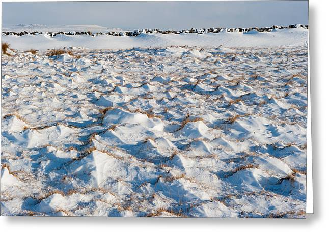 Snow Covered Grass Greeting Card