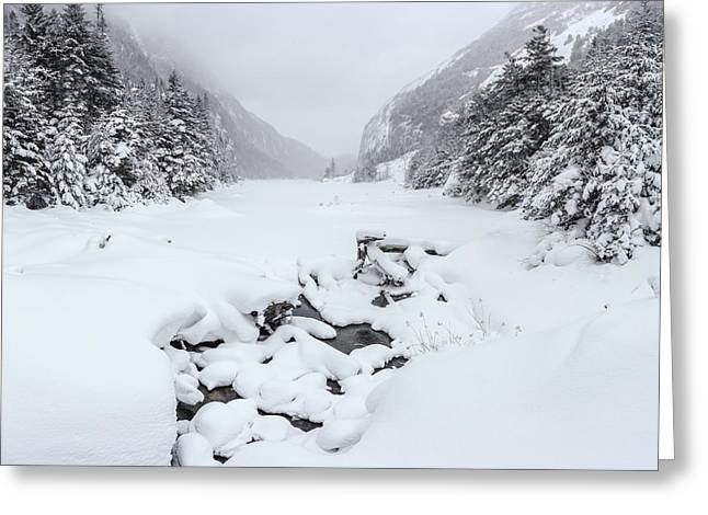 Snow Covered Lake Greeting Card