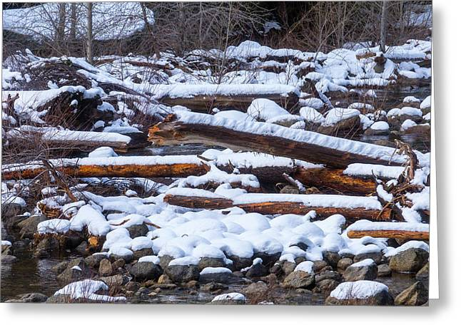 Snow Covered Logs Greeting Card