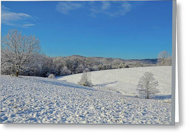 Snow Covered Pasture Greeting Card
