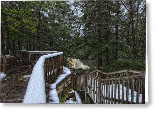 Snow Covered Path Greeting Card