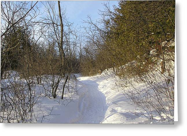 Snow Covered Pathway Greeting Card by Richard Mitchell