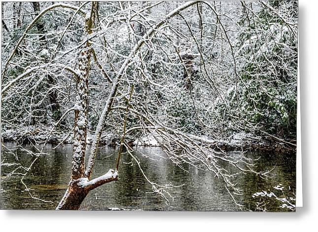 Greeting Card featuring the photograph Snow Cranberry River by Thomas R Fletcher