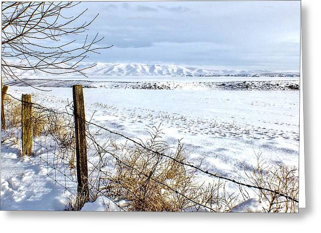 Snow Crossing Greeting Card by Brad Stinson