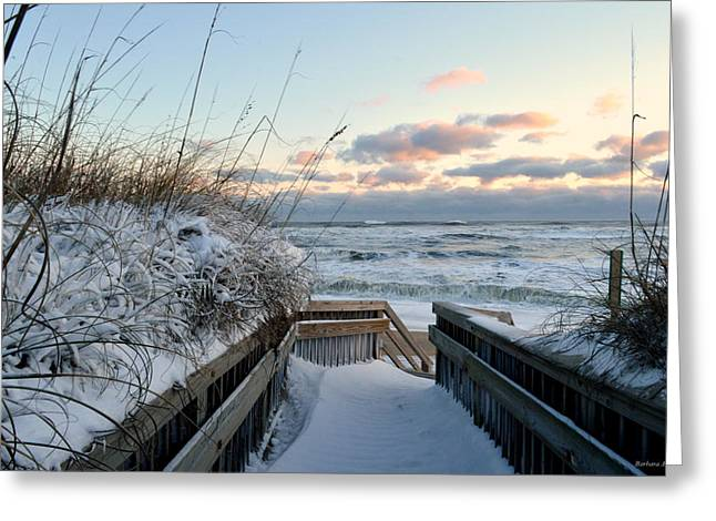Snow Day At The Beach Greeting Card