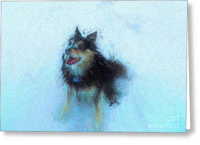 Snow Dog  Greeting Card by Claire Bull
