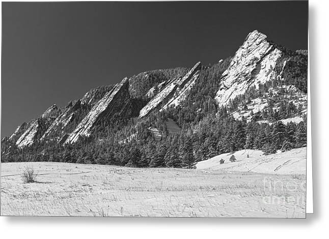 Snow Dusted Flatirons Boulder Co Panorama Bw Greeting Card by James BO  Insogna