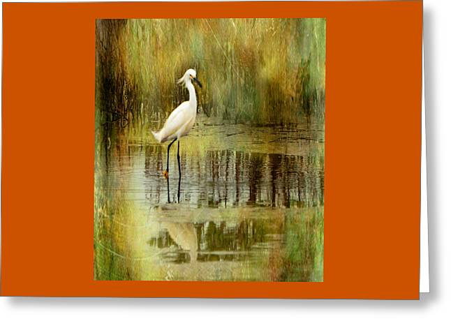 Snow Egret Greeting Card by Suzi Harr