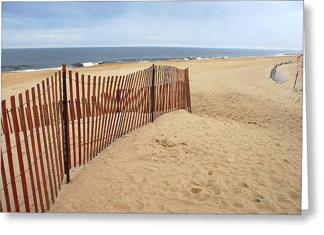 Snow Fence - Plum Island Greeting Card