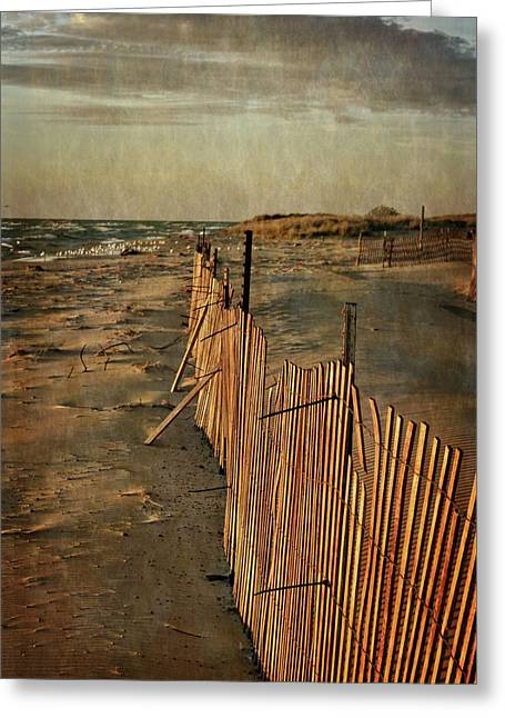 Greeting Card featuring the photograph Snow Fence And Lake Michigan by Michelle Calkins