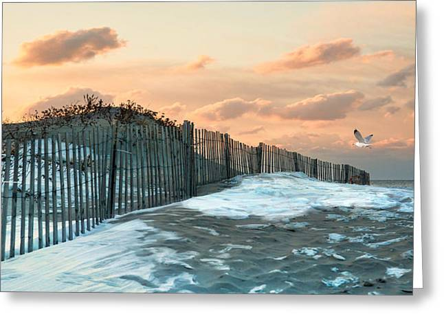 Greeting Card featuring the photograph Snow Fence by Robin-lee Vieira