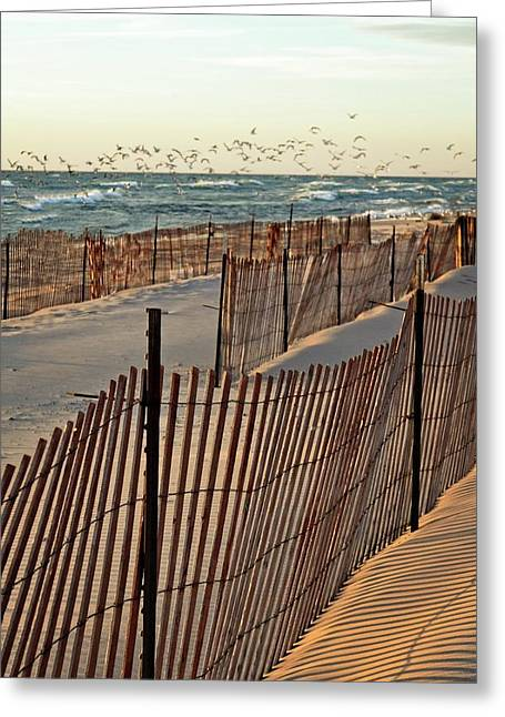 Greeting Card featuring the photograph Snow Fences 3.0 by Michelle Calkins
