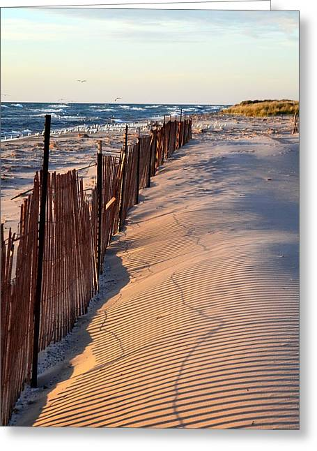 Greeting Card featuring the photograph Snow Fences 4.0 by Michelle Calkins