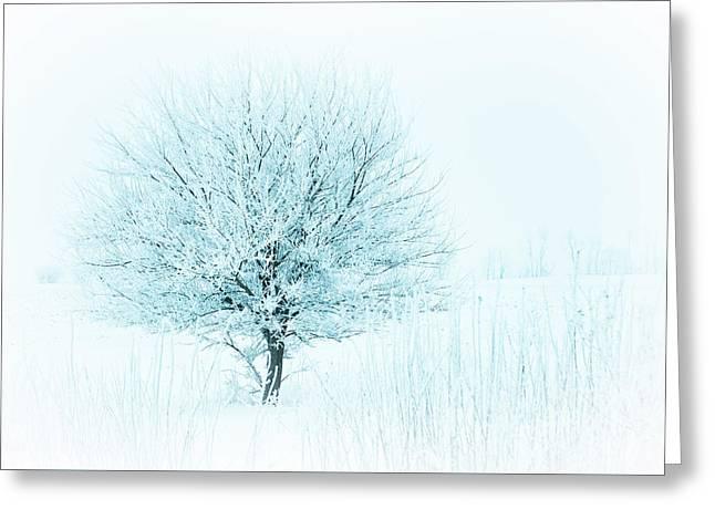 Snow Field Tree Greeting Card