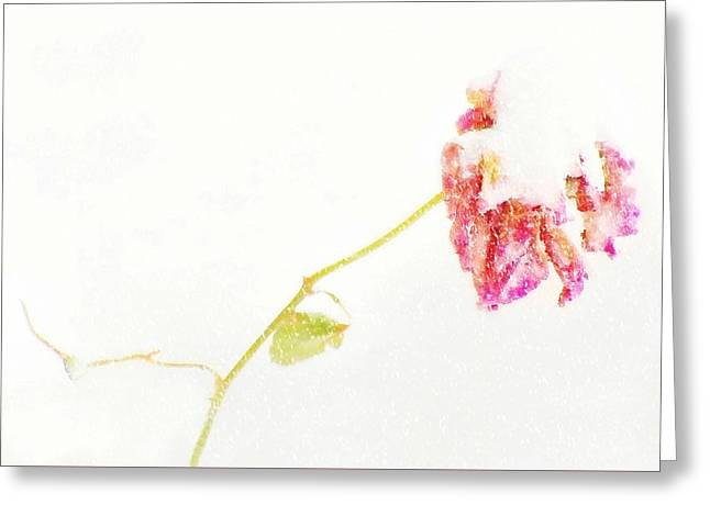 Snow Flower Greeting Card by Diana Angstadt