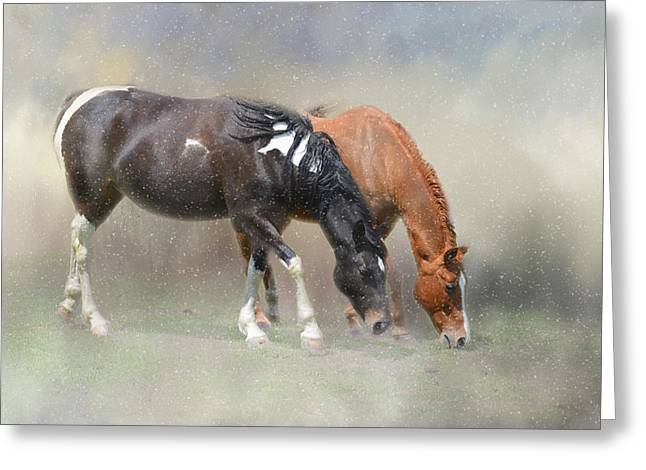 Snow Flurries In The Pasture Greeting Card by Lynn Bauer