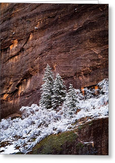 Snow Globe Greeting Card