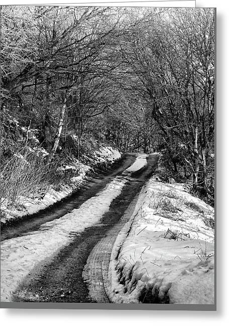 Snow In Rawtenstall Woods Greeting Card