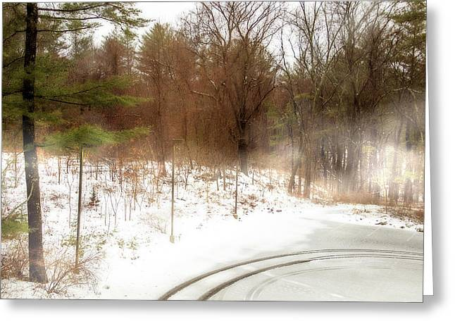 Snow In Spring Greeting Card by Terry Davis