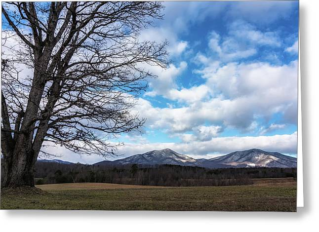 Snow In The High Mountains Greeting Card