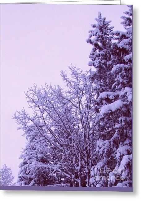 Snow Laden Trees Greeting Card