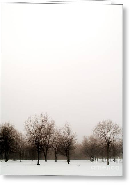 Snow Landscape Greeting Card by Emilio Lovisa
