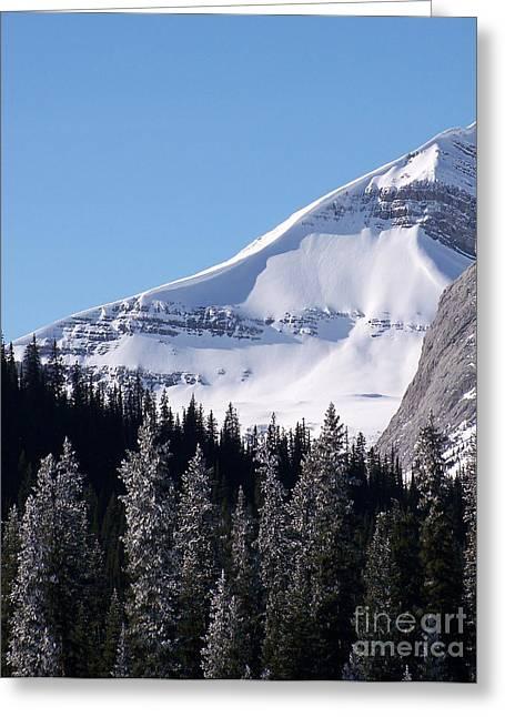 Snow Ledge Greeting Card by Greg Hammond