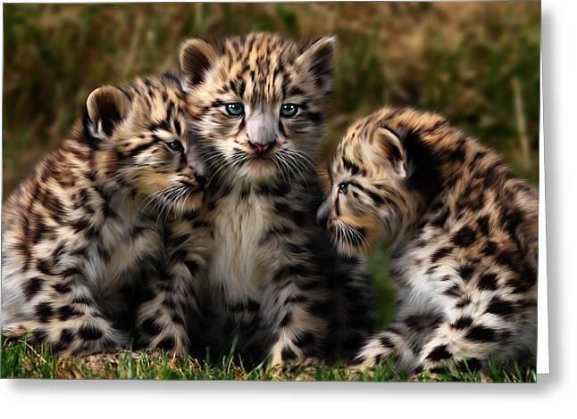 Snow Leopard Cubs - Closeup Greeting Card by Julie L Hoddinott