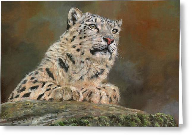 Snow Leopard On Rock Greeting Card by David Stribbling
