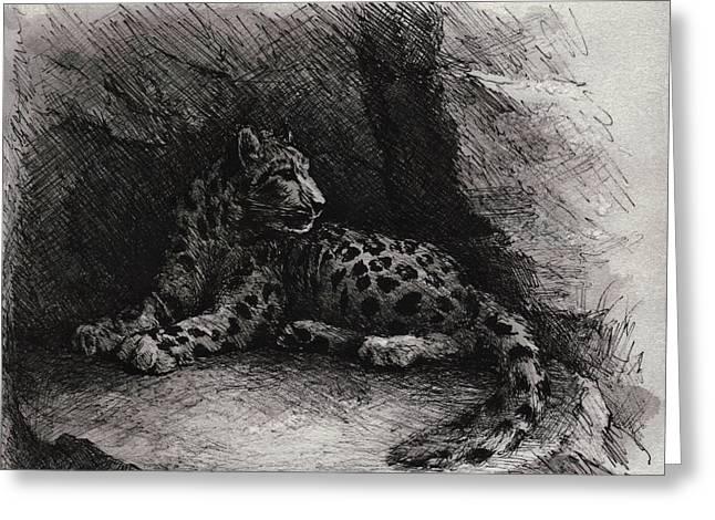 Snow Leopard Greeting Card by Rachel Christine Nowicki