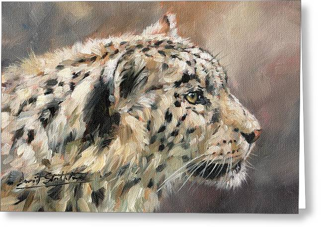 Snow Leopard Study Greeting Card by David Stribbling