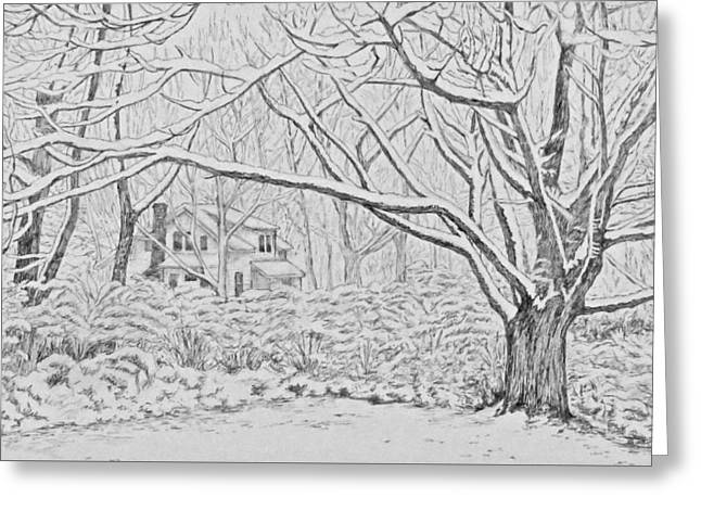 Snow On An Old Ash Tree Greeting Card
