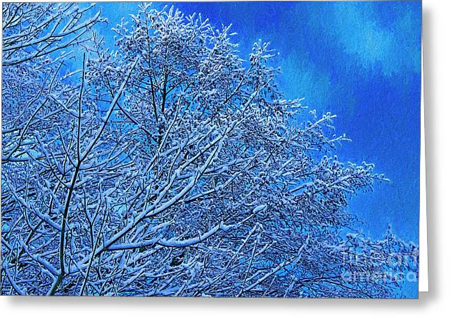 Snow On Branches Photo Art Greeting Card