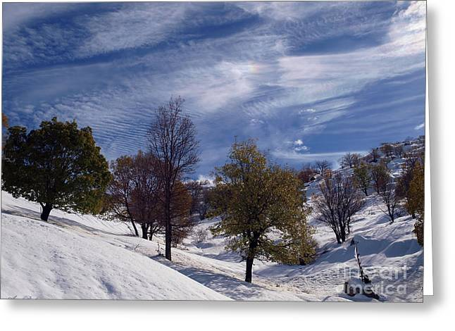 Snow On Mount Hermon Greeting Card by Arik Baltinester
