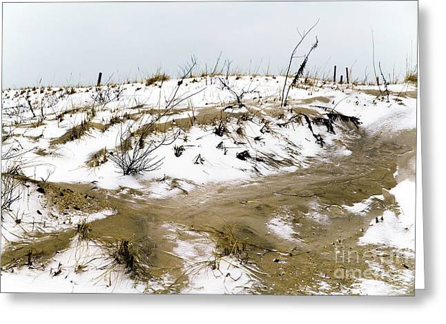 Snow On The Dune Greeting Card by John Rizzuto