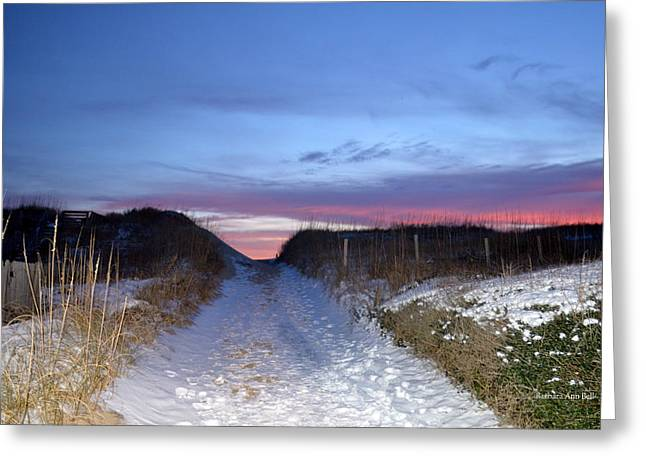 Greeting Card featuring the photograph Snow On The Dunes by Barbara Ann Bell