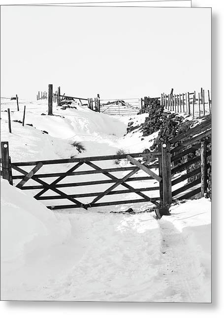 Snow On The Lane - Monochrome Greeting Card by Philip Openshaw