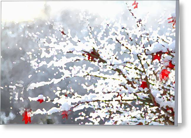 Snow On The Maple Greeting Card