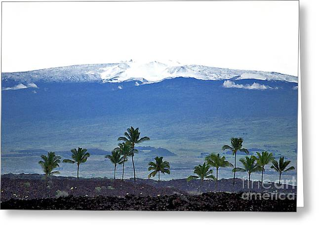 Greeting Card featuring the photograph Snow On The Mountain by Bette Phelan