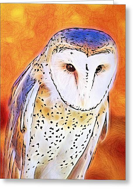 White Face Barn Owl Greeting Card