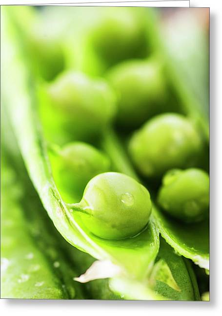 Snow Peas Or Green Peas Seeds Greeting Card by Vishwanath Bhat
