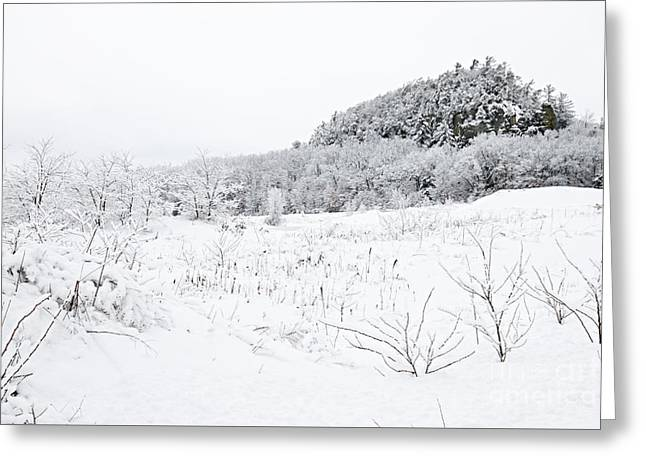 Greeting Card featuring the photograph Snow Scene by Larry Ricker