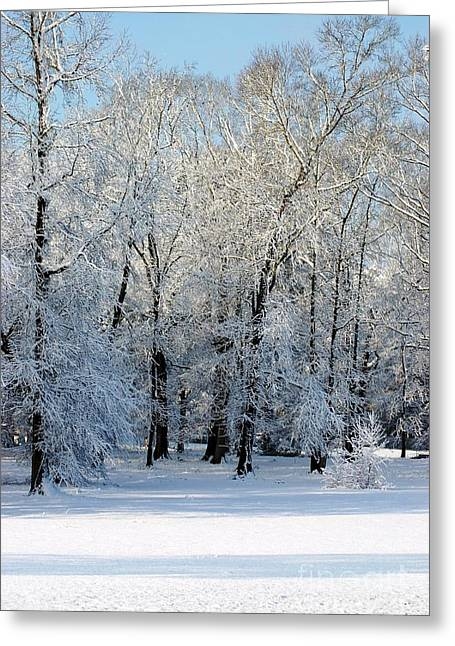 Snow Scene One Greeting Card